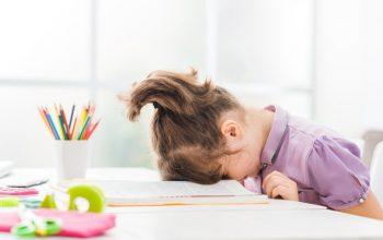 Kelebihan dan Kekurangan dari Program Homeschooling