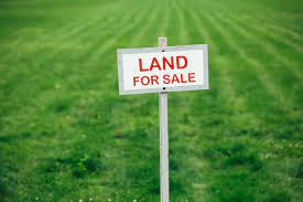 5 Langkah Penting Sebelum Anda Membeli Kavling Tanah